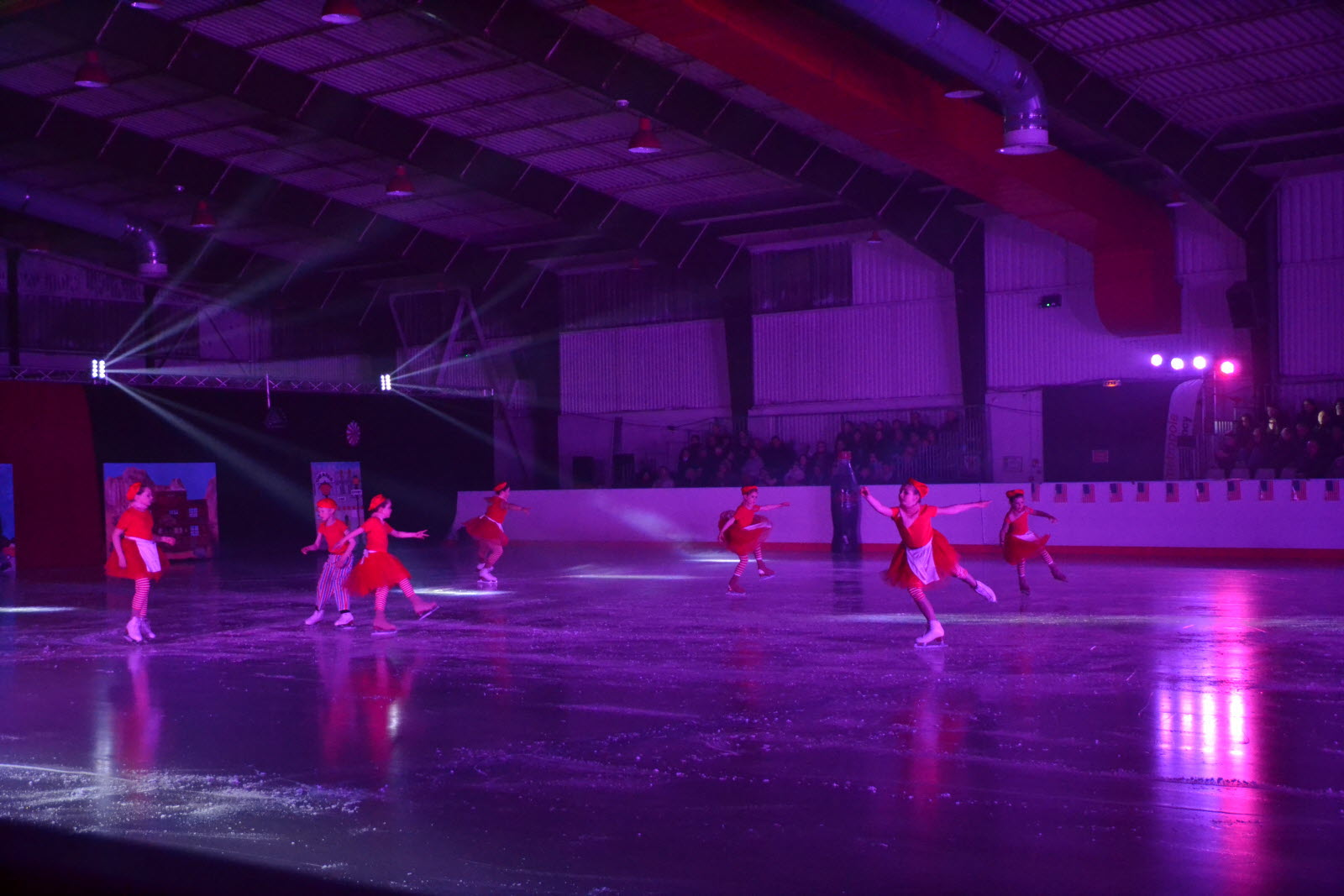 spectacle hockey sur glace